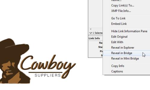 Adapting Logos in InDesign